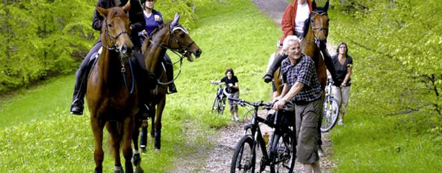 Reiter und Biker im Wald – Konflikte vermeiden