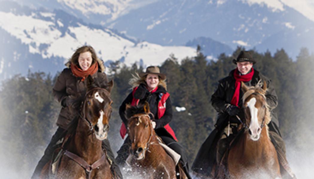 Pferdeplausch auf Schnee und Eis