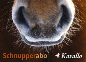 Schnupperabonnement Kavallo - Das Schweizer Pferdemagazin