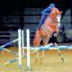 Sport und Tierschutz im Dialog