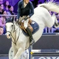 Clooney als Pferd des Jahres nominiert