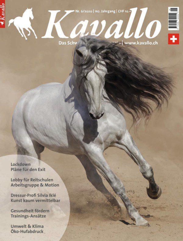 Einzelheft kaufen: Kavallo-Ausgabe Juni 2020