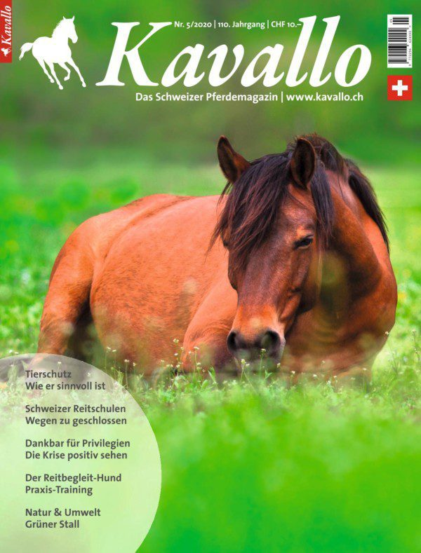 Einzelheft kaufen: Kavallo-Ausgabe Mai 2020