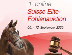 Verein Schweizer Sportpferde VSS/ACSS