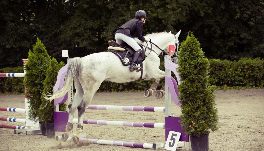 SVPS: Reglementsanpassungen für Pferdesport-Veranstaltungen