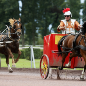 Keine Römerrennen in diesem Jahr. Die Veranstaltung Equus Helveticus 2020 wurde abgesagt. (Bild zVg)