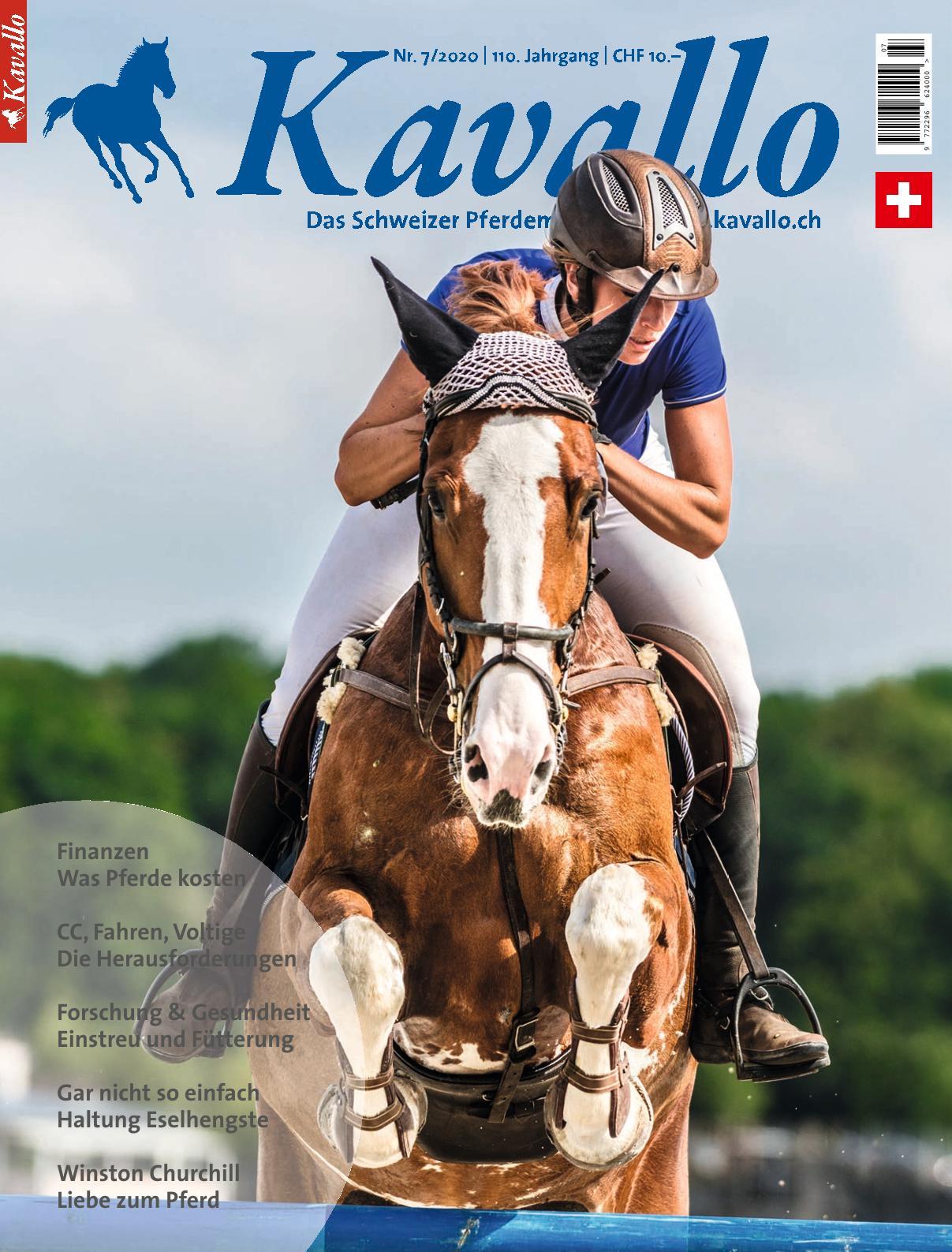Kavallo 7 2020 – Was Pferde kosten