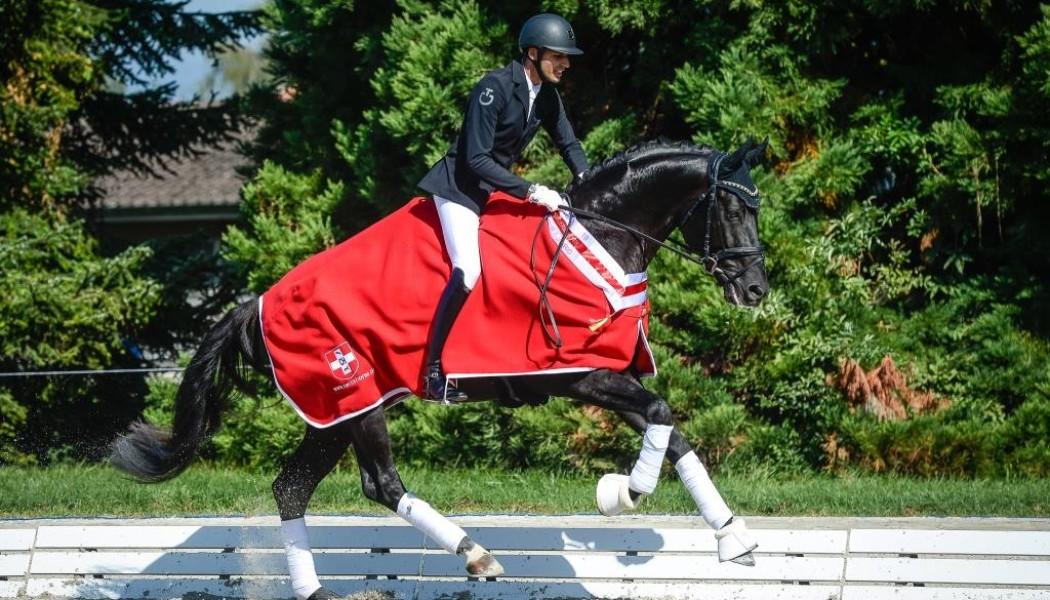 Sieger der 4jährigen Dressurpferde 2019: Fürst Alexander TM CH. Auch bei den Dressurpferden werden die Siegerrunden der Schweizer Meister 2020 fehlen. (Katja Stuppia)