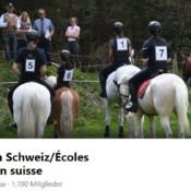 Printscreen der Facebook-Gruppe Reitschulen Schweiz.