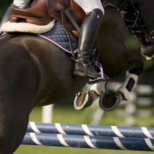 Die diesjährige R-Schweizermeisterschaft Springen findet vom 21. bis 23.August 2020 in Balsthal (SO) statt. (Medienmitteilung SVPS)