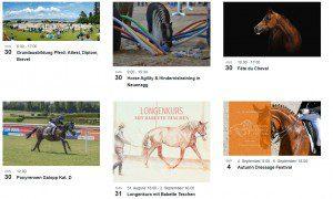 Agenda, Veranstaltungen, Hundesport, Pferdesport, Schweiz
