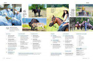 Kavallo-Magazin, Grossauflage 2020, kostenlos lesen