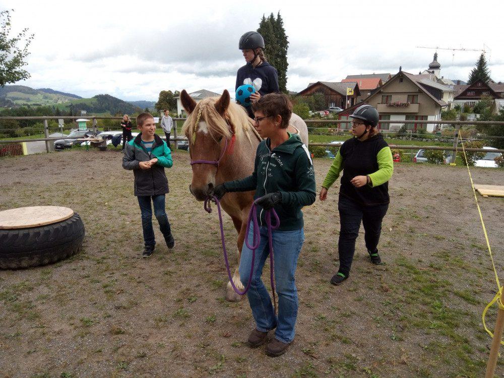 Therapeutische Arbeit mit Pferden auf qualifiziertem Niveau