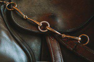 Pferdeschmuck hat bei BijouxStadelmann eine lange Tradition: seit 50 Jahren fertigen wir in unserer Bijouterie hochwertigen Schmuck mit Motiven rund ums Thema Pferd. Reiter und Pferdebegeisterte finden bei uns ein breites Sortiment an Schmuck mit Bezug zum Pferdesport. Entdecken Sie die Auswahl an Anhänger, Ohrhänger, Armbänder und Ringe aus edelsten Materialien, hergestellt in unserem Atelier in Bern auf www.bijouxstadelmann.ch.