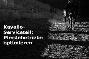 Betriebswirtschaft Pferdebetriebe Schweiz