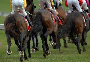 Pferderennen, Schweiz, Canstockphoto