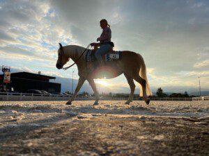 Blue Star Show der Swiss Western Riding Association