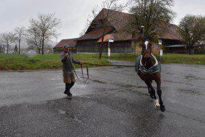 Der Hufschmied Cyrill Zuber beurteilt das Pferd auf weicher und harter Unterlage im Schritt und im Trab.(Bild Fachverband Farriertec Suisse)